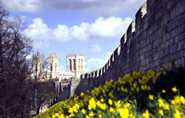 Experience the longest medieval town walls in England