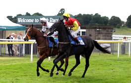 Enjoy horseracing as the Romans did 2000 years ago