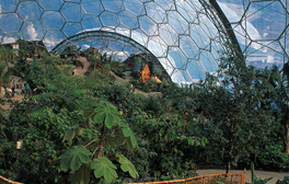 Broaden your horizons at Eden Project
