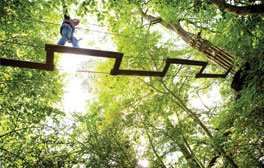 Get in touch with your inner Tarzan at Go Ape