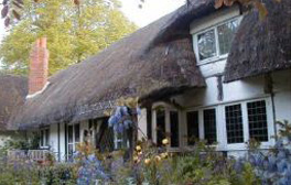 Discover Enid Blyton's Old Thatch Gardens