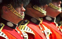 Image of the Royal guards