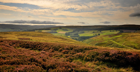 Moorland in Weardale, North Pennines. Area of Outstanding Natural Beauty