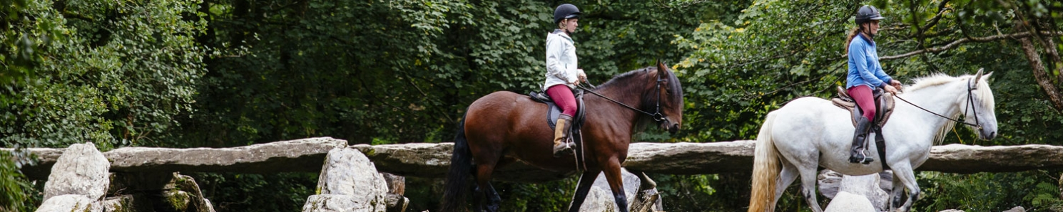 Horse Riding Holidays & Sports in England
