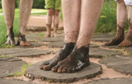 Take a barefoot walk in the woods of Trentham Estate