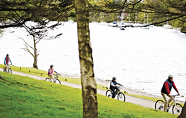 Discover Windermere's secret shore on the West Shore Cycleway