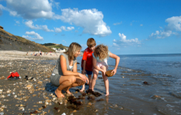 Learn how to find fossils with a guided fossil walk