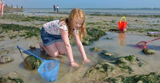 A little girl rock pooling at the coast