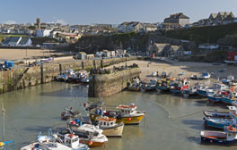 Sample some fantastic seafood at the Newquay Fish Festival