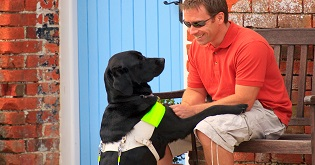 A man with his assistance dog on a bench © VisitEngland/VisitBritain Pawel Libera
