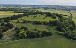 Discover Danebury mysterious Iron Age world