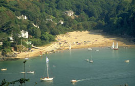 Discover Salcombe
