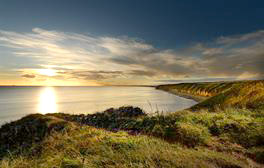 Spot rare plants and wildlife on the Durham Heritage Coast