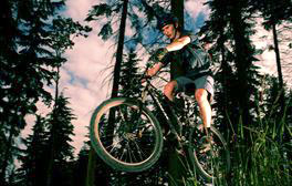 Ride the red cycle trail at Hamsterley Forest