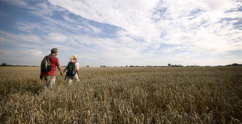 Walking in Northamptonshire