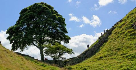 Explore Northumberland