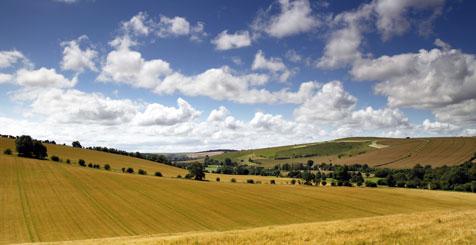 Explore Wiltshire