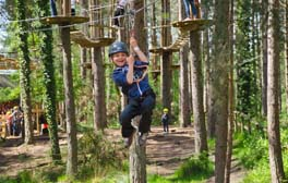 Go wild with your cheeky monkeys in Dorset