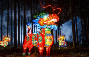 Festival of Light; November events