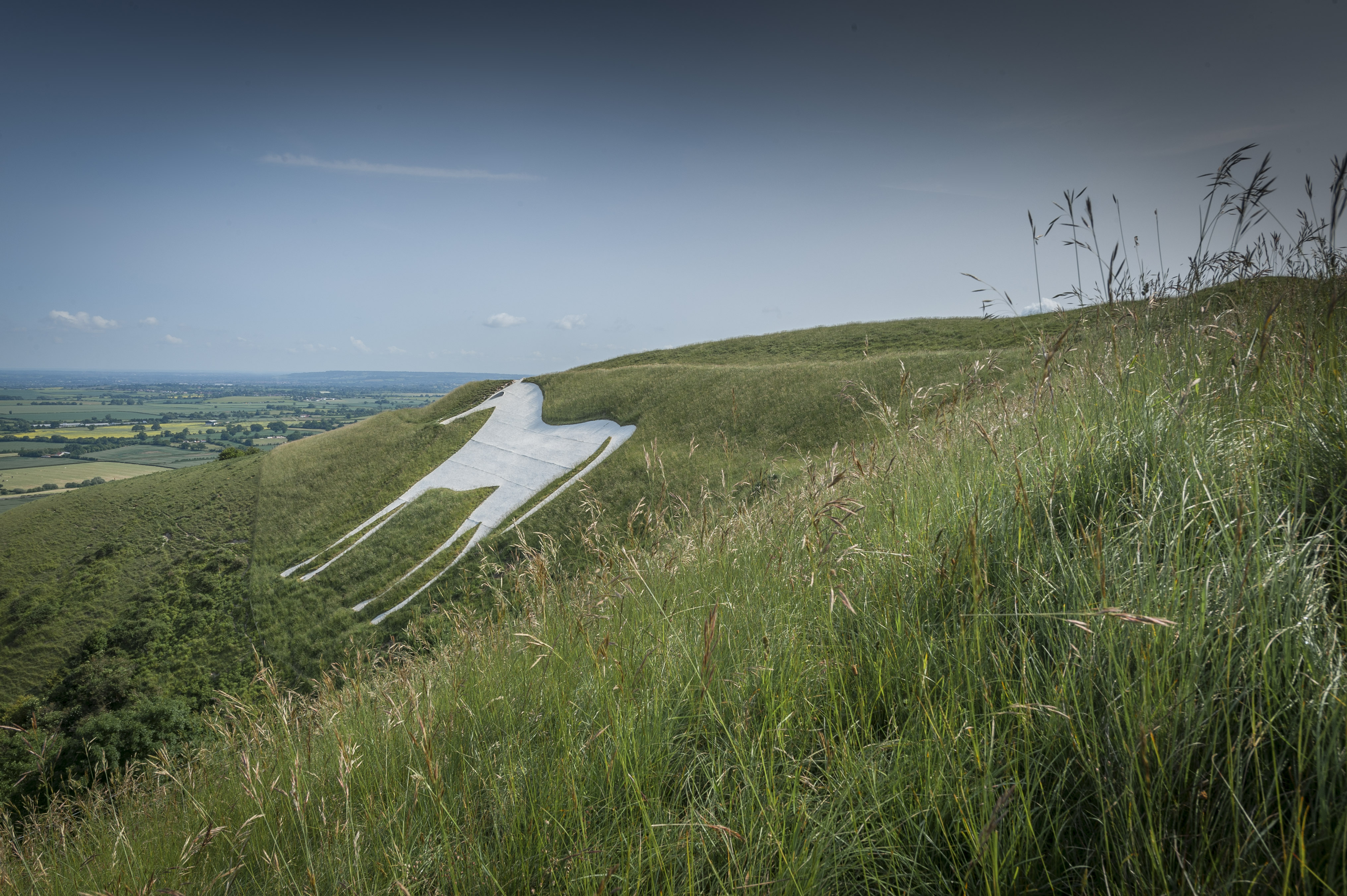 Discover Wiltshire's oldest White Horse chalk carving