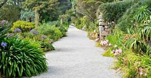 Tresco Gardens, Isles of Scilly