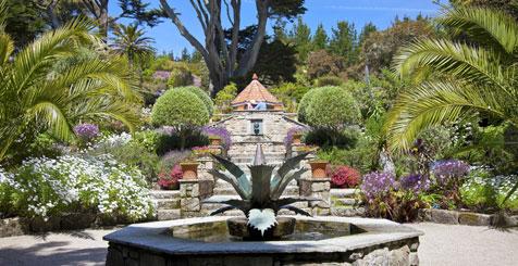 Tresco Abbey Garden, Isles of Scilly
