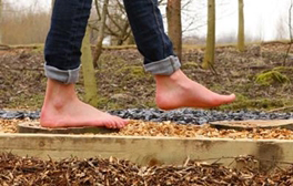 Walk barefoot through The National Forest at CONKERS