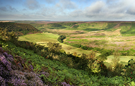 Walk with giants at the Hole of Horcum