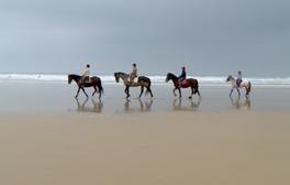 Ride a horse across Perranporth beach
