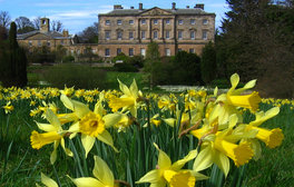 Howick Hall Gardens, Yorkshire - Spring (c) VisitEngland