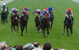 Cheer on a winner at the Northumberland Plate Festival