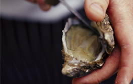 Quaff down oysters in bohemian Whitstable