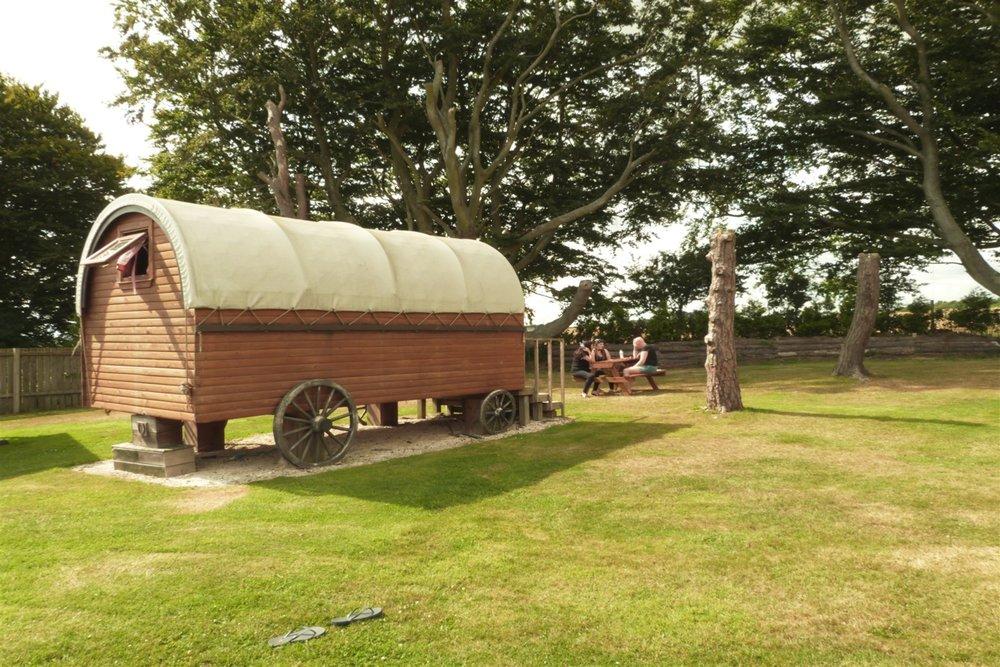 Pinewood Park Wagon