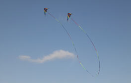 Watch creatures fly at Portsmouth International Kite Festival