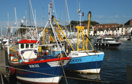 Experience a celebration of Dorset seafood