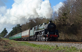 Travel across Hampshire's countryside on the Watercress Line