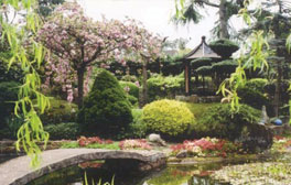 Find a piece of Japan at Pure Land Japanese Garden