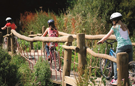 Free-wheeling fun in Leicester & The National Forest
