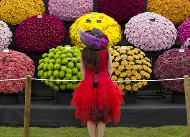 RHS Chelsea Flower Show 2014, London (c)RHS, Justin Tallis