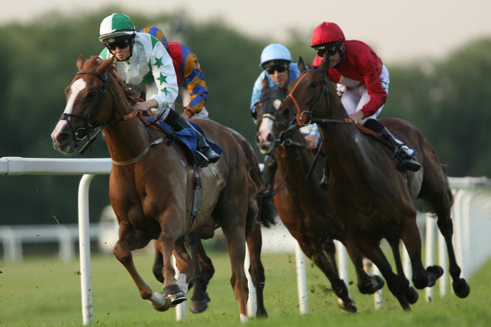 Royal Windsor Racecourse