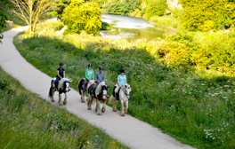 Trot into Notts on a horse-themed rural break