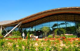 Les jardins de Savill Garden, oasis royale de beauté