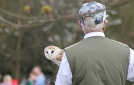 Be at one with birds of prey at Rosliston Forestry Centre