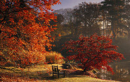Sheffield Park and Garden, East Sussex (c)National Trust Images, Andrew Butler
