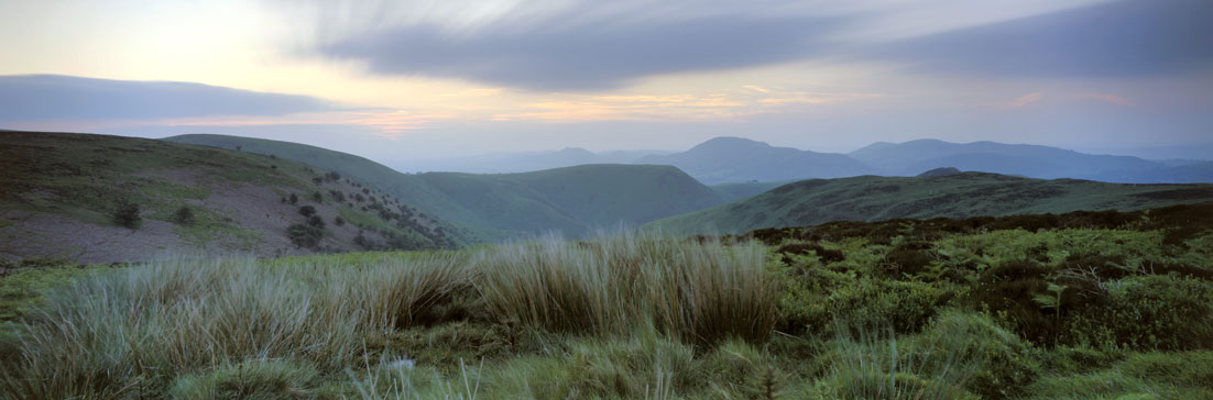 Rolling hills in Shrubland, Carding Mill Valley, Shropshire ©NT Images David Noton