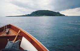 Take a visit to Looe Island