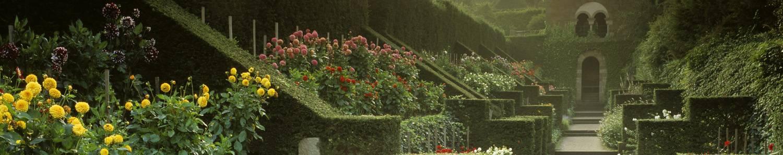 Biddulph Grange Garden - Staffordshire (c) VisitEngland