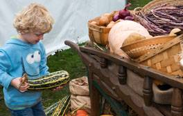 Boy holding a marrow by a barrow of harvest vegetables at the Taste of Autumn Festival (c) RHS _264x168