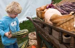 Boy holding a marrow by a barrow of harvest vegetables at the Taste of Autumn Festival (c) RHS _264x168