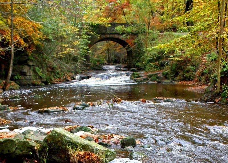May Beck and Falling Foss, North York Moors